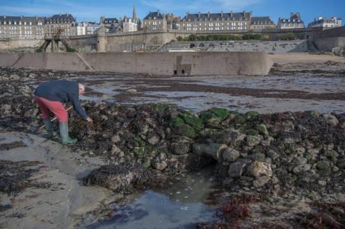 Le mur se dévoile à marée basse