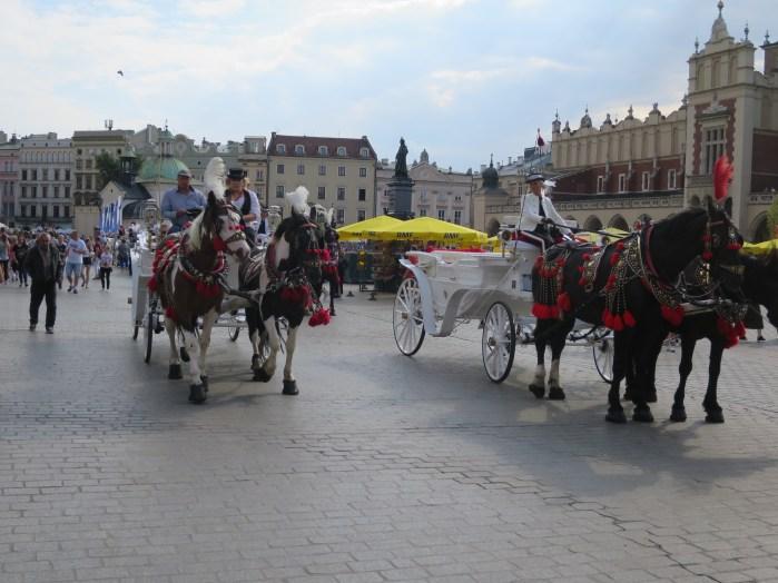 中央市場広場の馬車