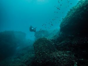 Gozo dive site