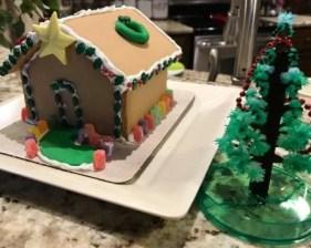 Nancy N. review of Magic Crystal Christmas Tree