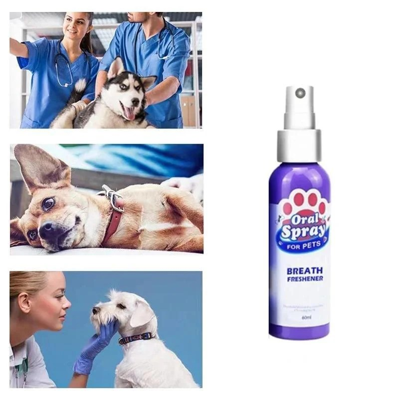 Spray Dental Para Pet