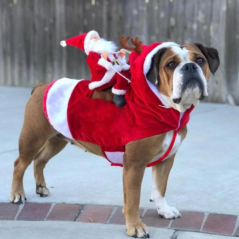 Roupa De Papai Noel Para Pet