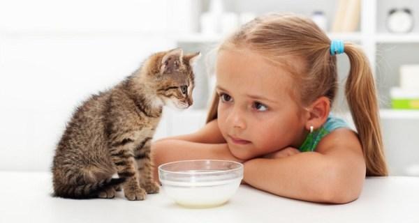 Как выглядит лишай у ребенка: фото, симптомы и лечение ...