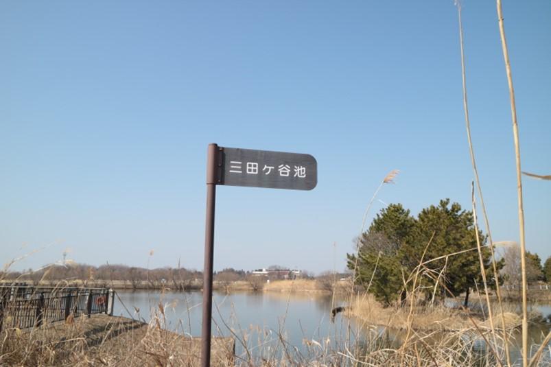 三田ヶ谷池のほとり