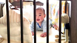 二人目育児の必需品と便利な育児グッズ 赤ちゃんとベビーベッド