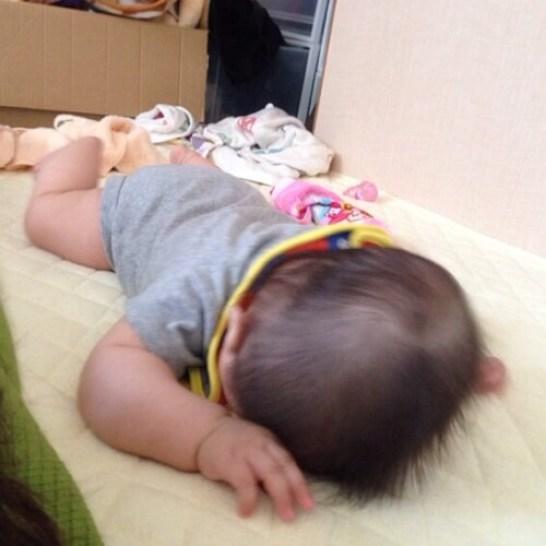七か月 赤ちゃん 成長