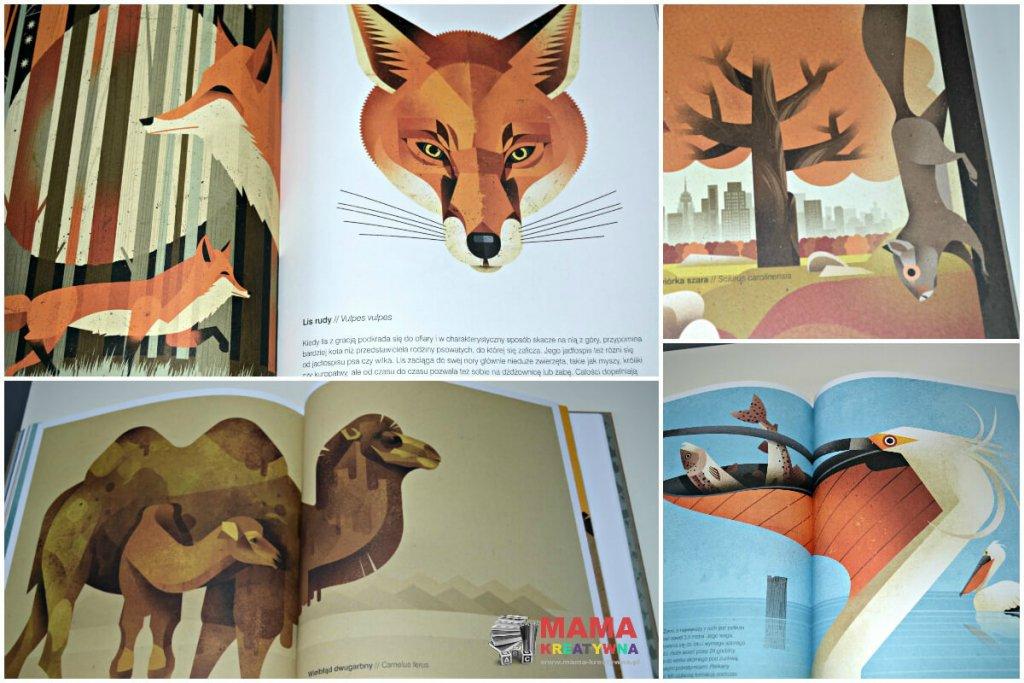 galeria dzikich zwierząt