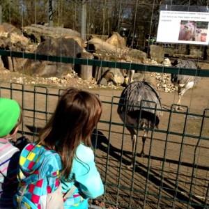 Besuch im Krefelder Zoo bei herrlichstem Sonnenschein und 20 Grad. Wenn das kein Frühling ist, weiß ich auch nicht.