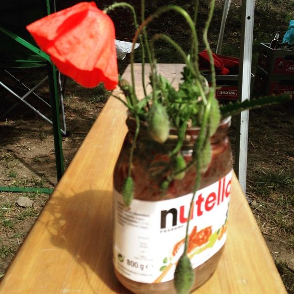 Leeres Nutellaglas wird Vase