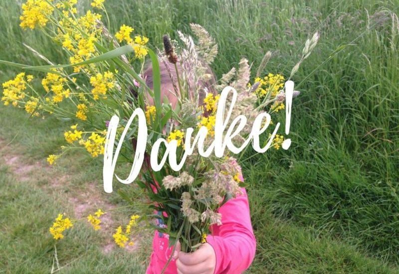 Scoyo Eltern Blog Award - Danke - Vote