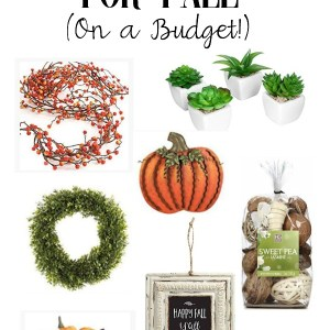 10 Amazing Home Decor Must-Haves for Fall (On a Budget)   New Ideas for Rustic Fall Decor   www.mamabearbliss.com