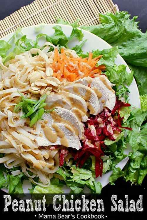 Moist chicken, shredded beets and carrots, all tossed together with rice sticks, salted peanuts and green onion, smothered in a delicious peanut dressing. This Peanut Chicken Salad is deliciously healthy! #salad #peanutdressing #chicken #healthy #mamabearscookbook
