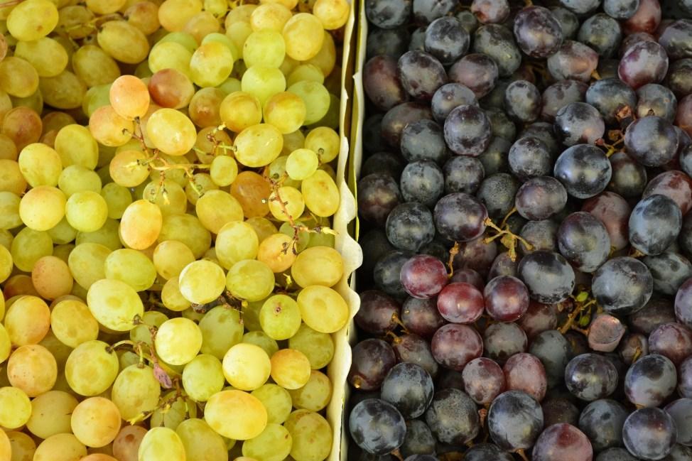 Grapes galore - present
