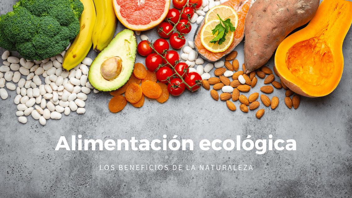 Alimentacion ecologica