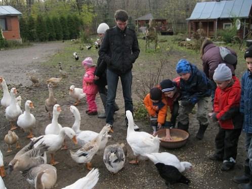 Ферма Белоснежка