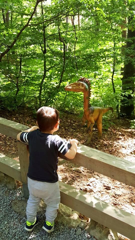 Când Matei i-a întâlnit pe dinozauri