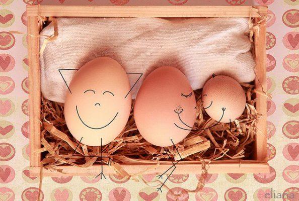 cama compartilhada ovos