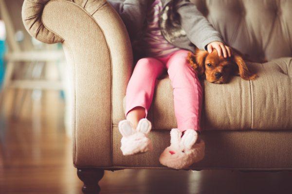 garota fazendo carinho no animal de estimação