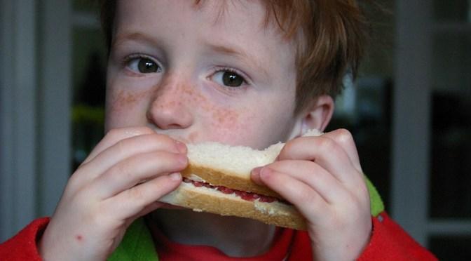 10 mandamentos da alimentação infantil