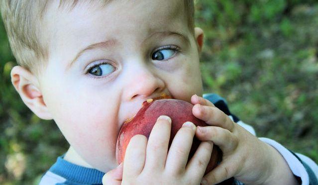 Meu filho não come: 15 dicas para mudar essa situação
