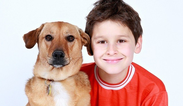 10 perguntas que você precisa fazer antes de adotar um pet