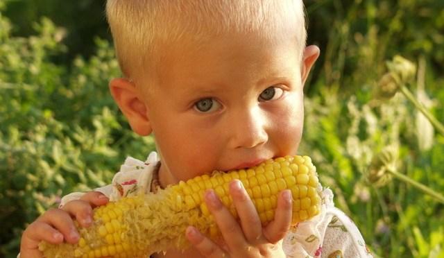 Alimentação: dez dicas para manter boa comunicação com seu filho na hora da refeição
