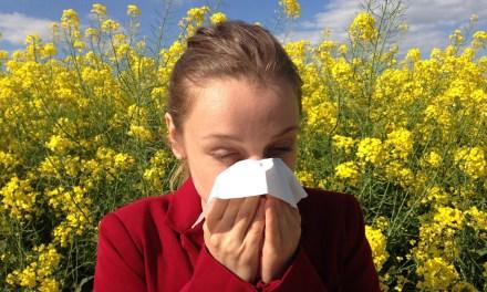 Dia Nacional de Prevenção da Alergia e Dia Mundial de Combate a Asma