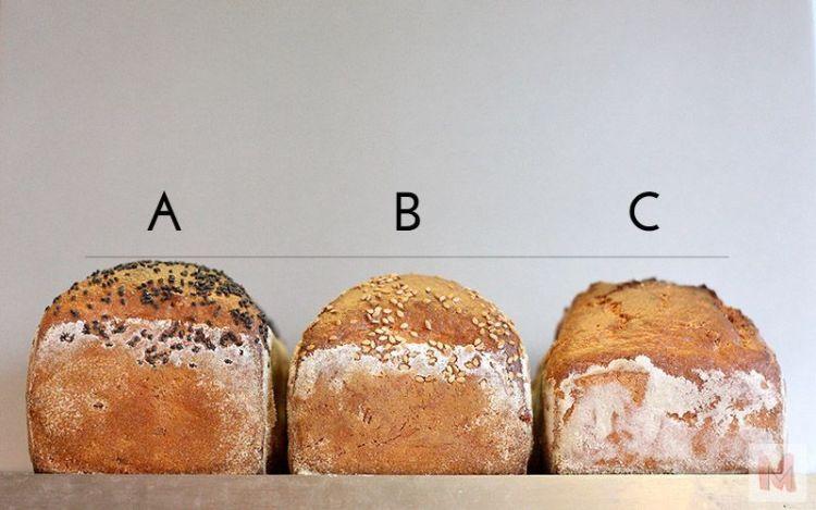 panes segunda fermentación