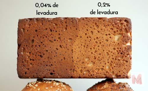culos de los panes levadura