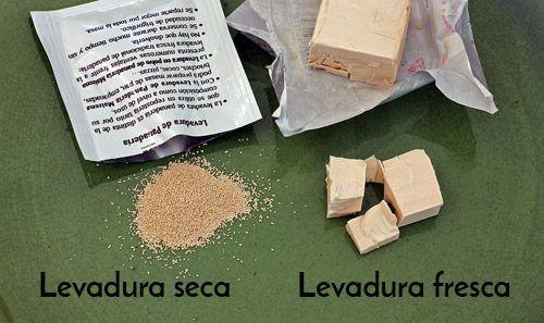 levadura seca levadura fresca pan sin gluten