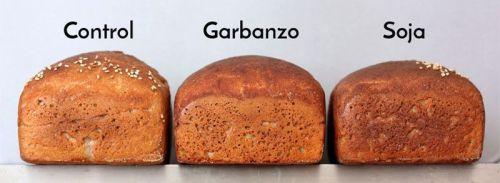 harina de legumbres perfil panes