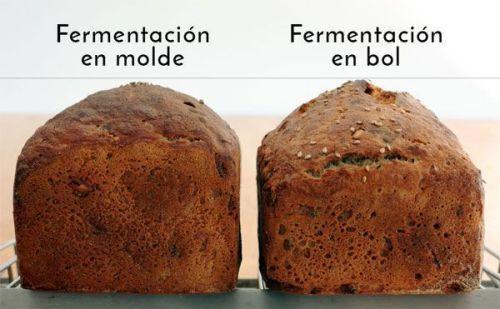 ¿Debe fermentar la masa en su forma final? panes sin gluten perfil