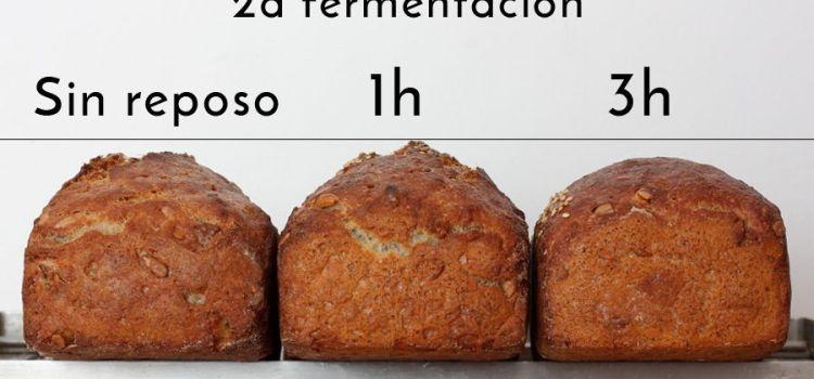 La segunda fermentación y sus cosas