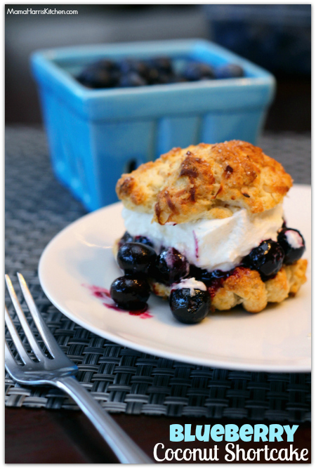 Blueberry Coconut Shortcake #LittleChanges #IC #ad - Mama Harris' Kitchen
