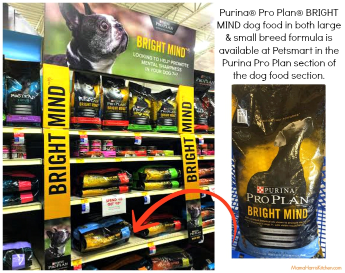 purina pro plan bright mind dog food at petsmart #BrightMind (ad) | Mama Harris' Kitchen
