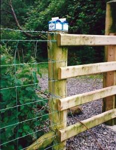 Milch auf dem Friedhofstor: Das gibt es nur noch in Irland