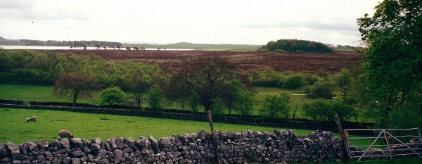 yorkshire dales moore