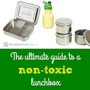 The ultimate guide to a non-toxic lunchbox
