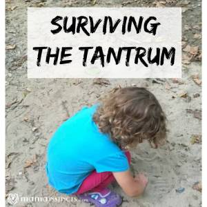 Surviving the Tantrum
