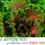 3 Surprising Facts you Didn't Know about Organic Food