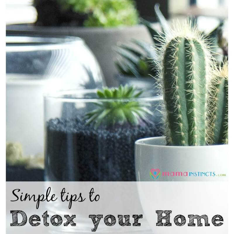 Follow these simple tips to start detoxing your home today and stay away from toxic chemicals, like endocrine disruptors. Especially if you have kids in your home as they are even more susceptible. Your health comes first and now we have safer options so you can have a green, non-toxic home.