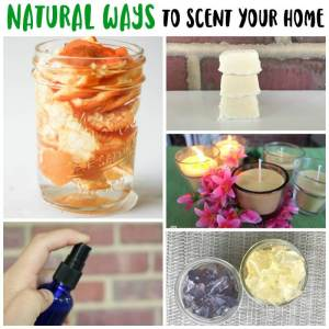Natural Ways to Scent Your Home (5 DIY Recipes)