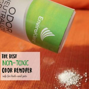 The Best Non-Toxic Odor Remover