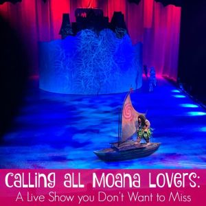 Calling all Moana Lovers: A Live Show you Don't Want to Miss