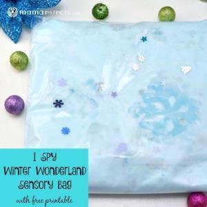 I Spy Winter Wonderland Sensory Bag (with Free Printable)