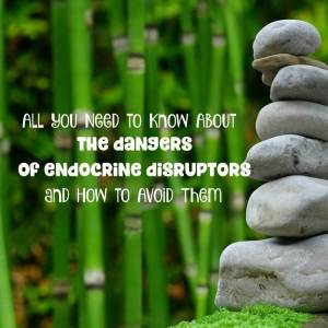 The Dangers of Endocrine Disruptors and How to Avoid Them