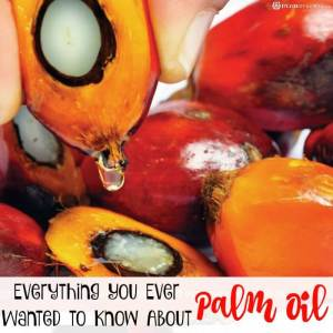 Everything You Ever Wanted to Know About Palm Oil