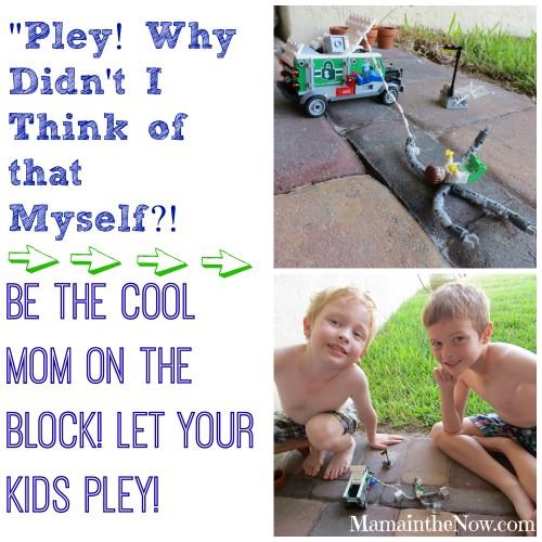 Pley! Why Didn't I think of that Myself?
