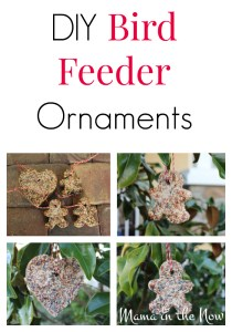 Bring nature closer to home! DIY bird feeder ornaments. Easy and fun to make and very popular among birds as well as craft-loving kids.