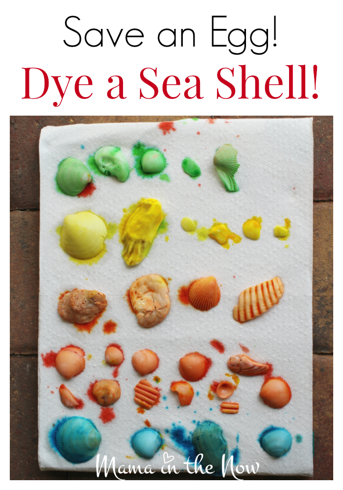 How to dye the most vibrant sea shells. Great craft project for kids to explore colors, mixing colors and fillers for sensory bins.